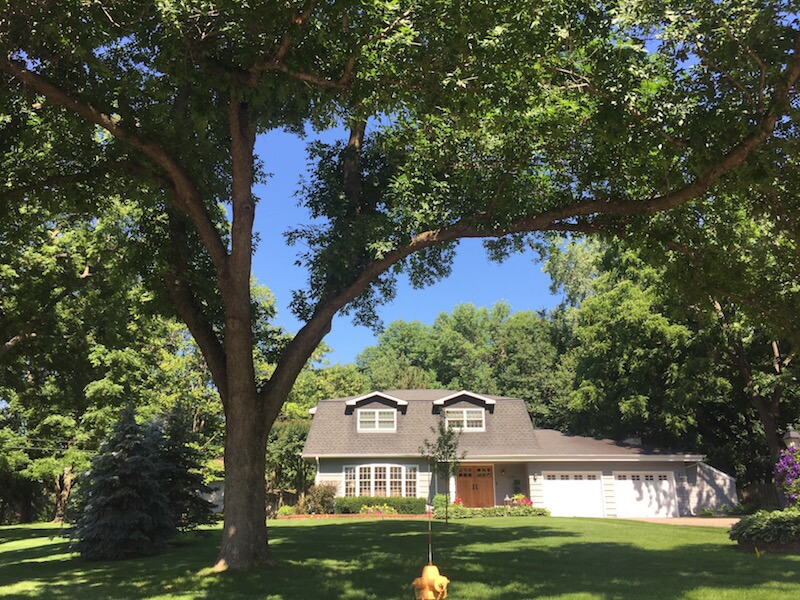 Homes in Hadley Hills Neighborhood in Plymouth, Minnesota
