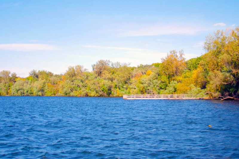 lake ann latin singles View michigan homes for sale and real estate listings and get the best house for you at remaxcom.